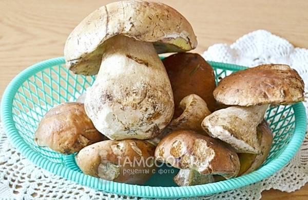 Как сушить белые грибы в домашних условиях: правила и сроки хранения