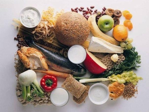 Можно ли давать овощи собаке? какие и в каком виде добавлять? (wolcha.ru)