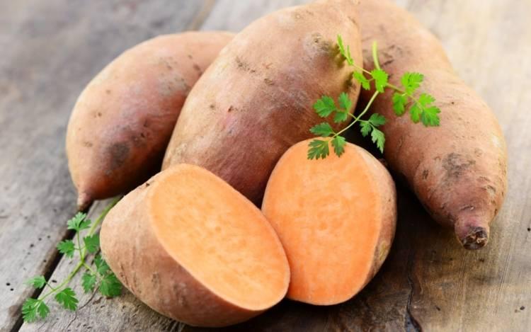 Польза и вред картофеля для здоровья человека – какой картофель полезнее