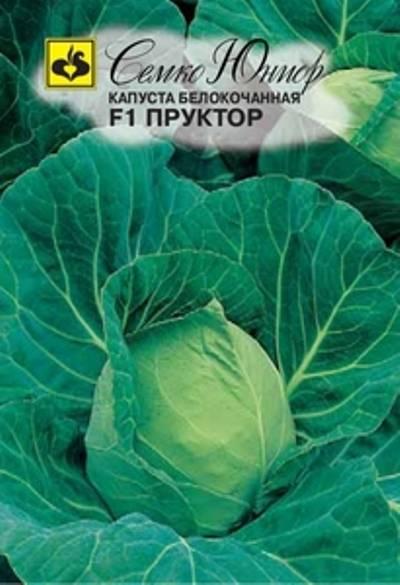 Капуста парел f1: описание гибрида и фото сорта, отзывы огородников о вкусовых качествах и урожайности