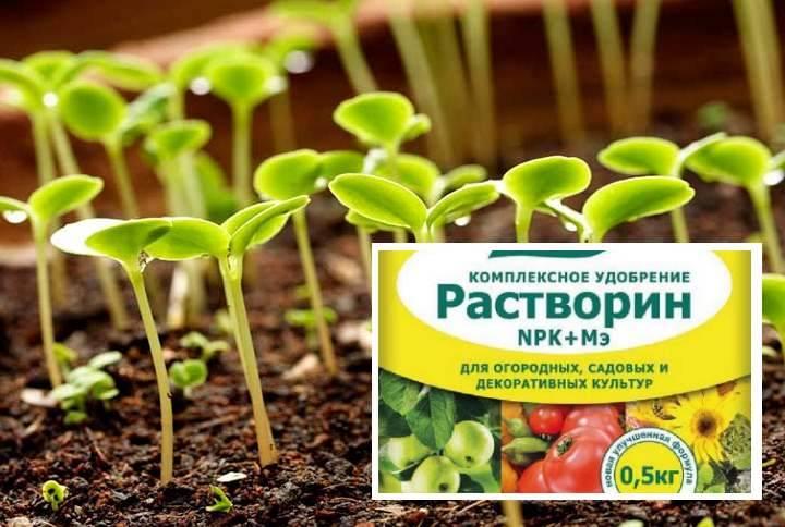 Полезный состав удобрения «растворин»: применение на даче