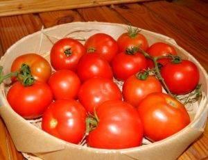 """Томат таня f1 - описание сорта, отзывы, урожайность - журнал """"совхозик"""""""