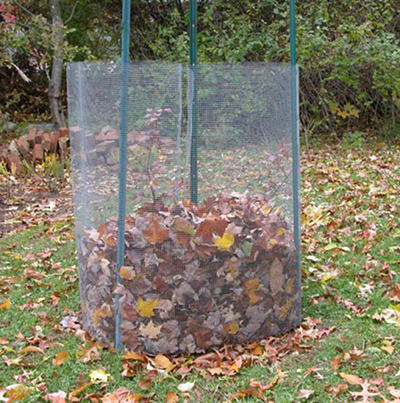 Как укрыть гортензию на зиму?