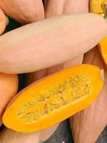 Тыква розовый банан: как вырастить необычный сорт? топ советов