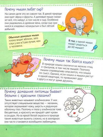 Интересные факты о кроликах домашних. кролики — интересные факты | интересные факты