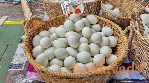 Яйца индоутки польза и вред