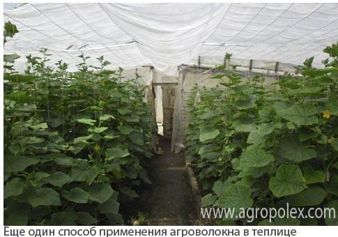 Агроволокно - 12 предложений в россии, сравнить цены и купить