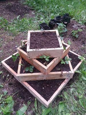 Пирамида для клубники: как сделать своими руками, размеры, выращивание и посадка