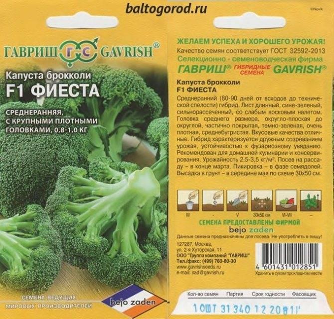 Капуста брокколи: сорта и гибриды, отзывы