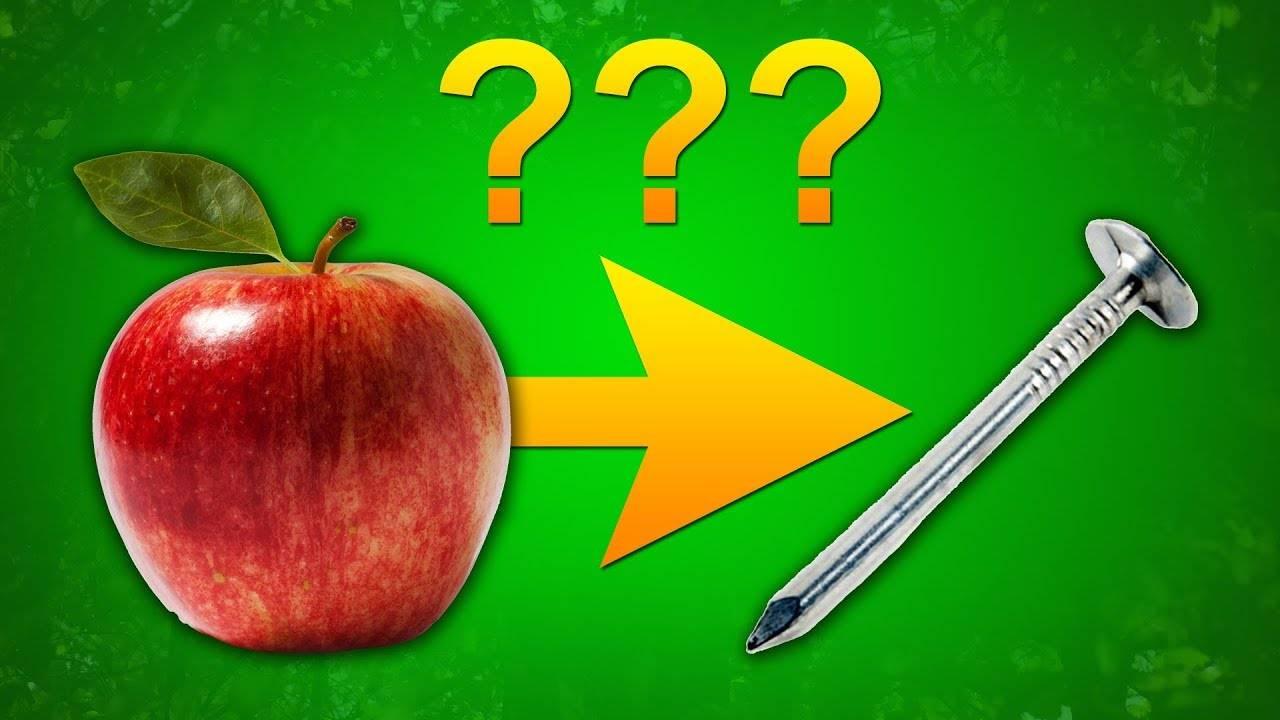 Какое вещество приводит к потемнению надкушенного яблока