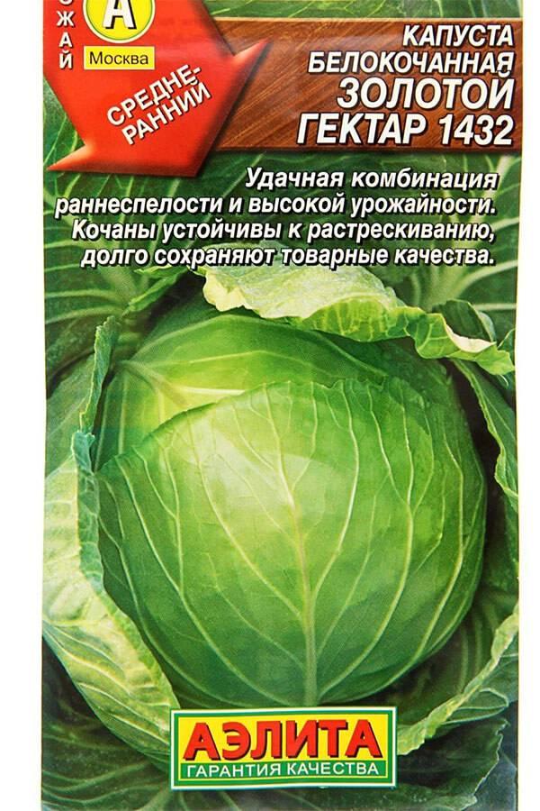 Капуста сорта белоснежка: описание и характеристика, особенности выращивания и ухода за капустой, фото, отзывы