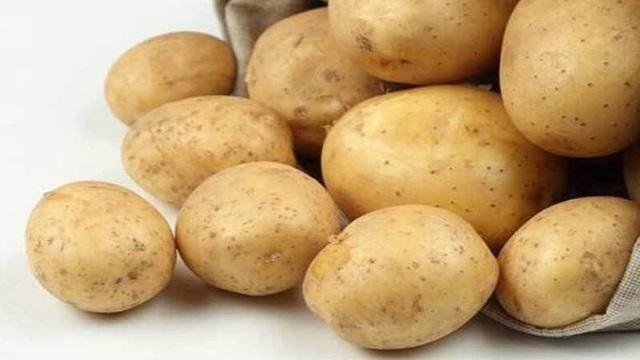 Адретта: все нюансы выращивания популярного сорта картофеля