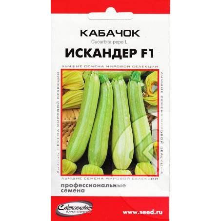 Описание сорта кабачка искандер f1, особенности выращивания и урожайность