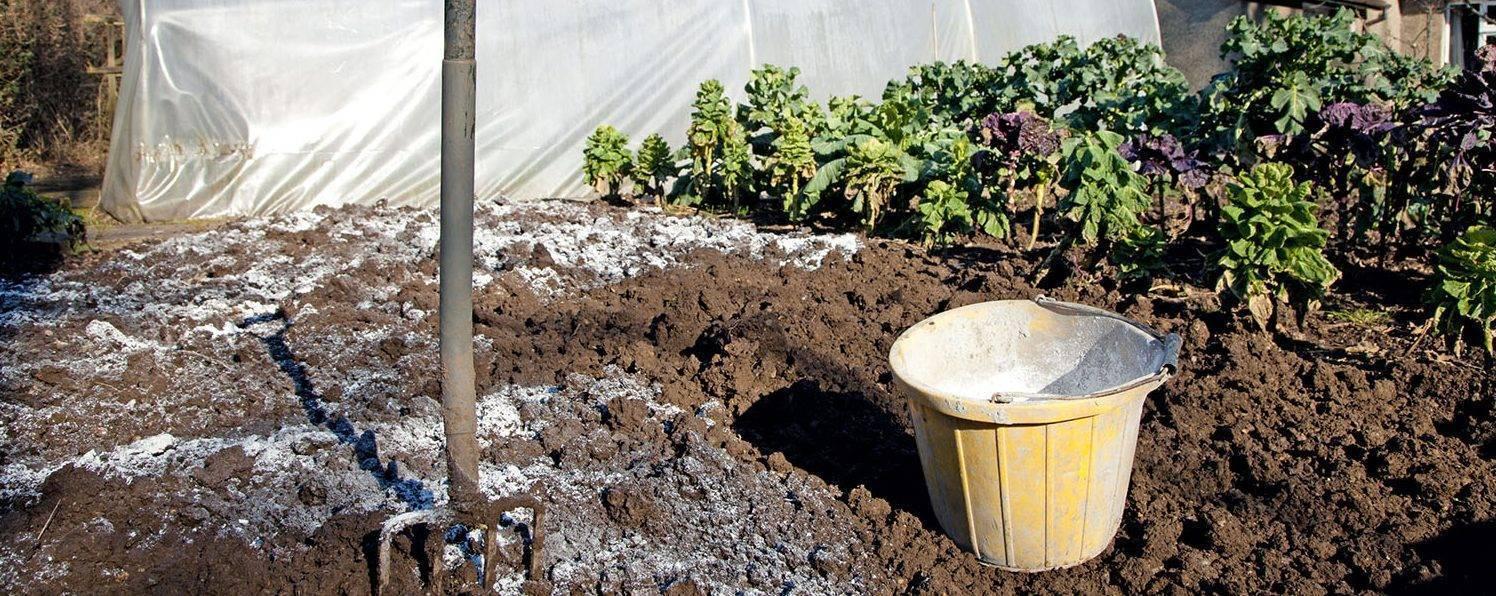 Удобрение калийная соль: что это такое, применение на огороде, чем ее заменить - почва.нет