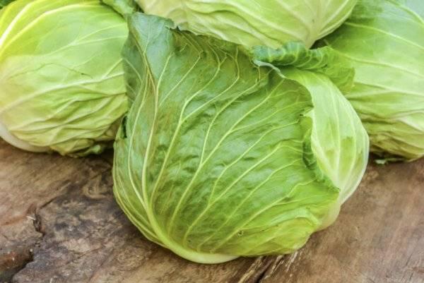 Чем полезна капуста - польза и вред белокочанной капусты для организма человека