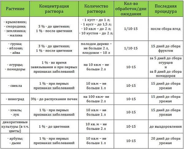 Бордосская жидкость для растений: свойства, как приготовить и применять