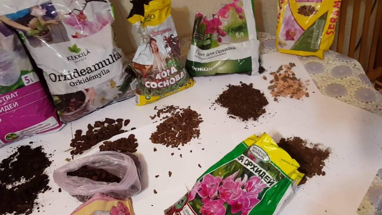 Серамис для орхидей: что это такое, как правильно высаживать в субстрат и каковы тонкости выращивания цветка на грунтовой смеси?