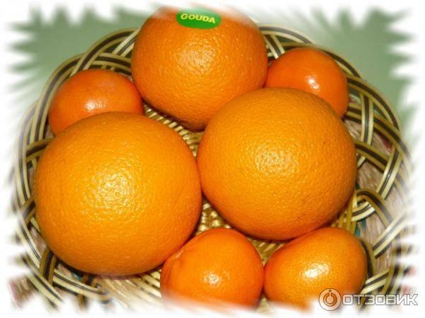Можно ли есть апельсины при похудении? действие фрукта и блюда