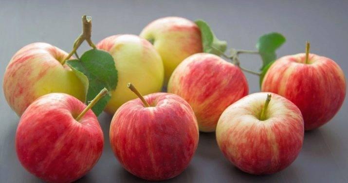 Какие продукты вызывают скачки уровня сахара в крови