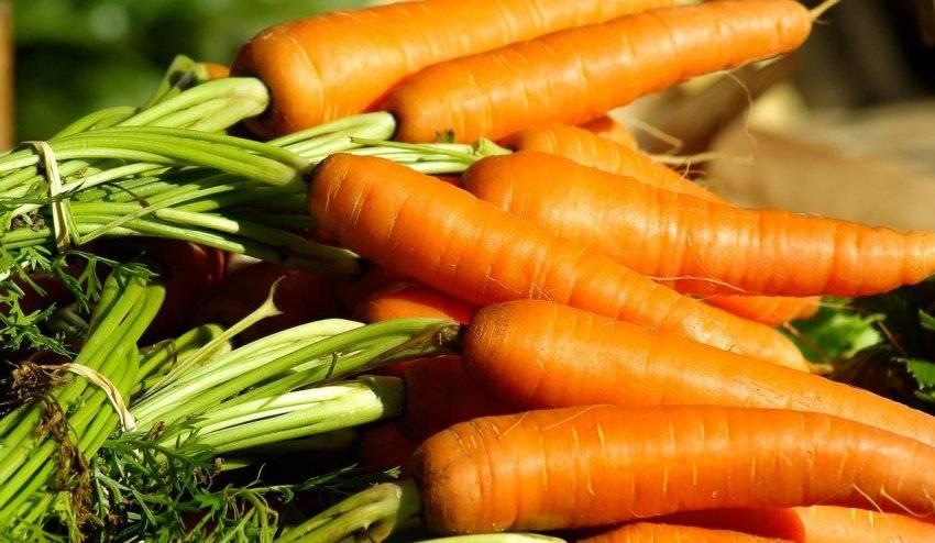 Вареные овощи и другие продукты при грудном вскармливании