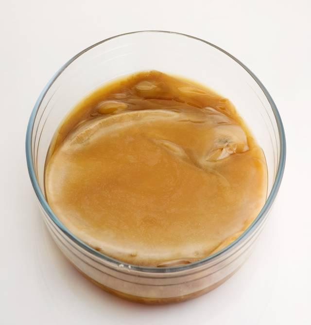 Как заваривать и пить чайный гриб правильно