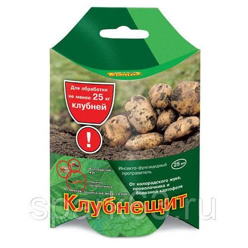 Проволочник – вот напасть! как не дать пропасть картошке – топ советов «зеленой грядки»!