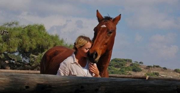 Управление лошадью: основы, нюансы, важные моменты