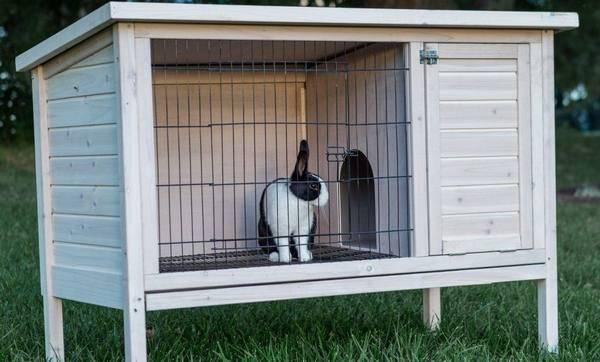 Как сдеалать клетку для кроликов по методу золотухина своими руками: чертежи и размеры