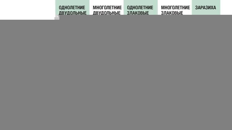 Состав и действие гербицида евролайтинг, нормы расхода и аналоги