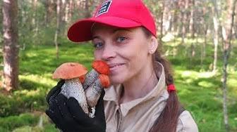 Лесные съедобные грибы с фото, названиями и описанием