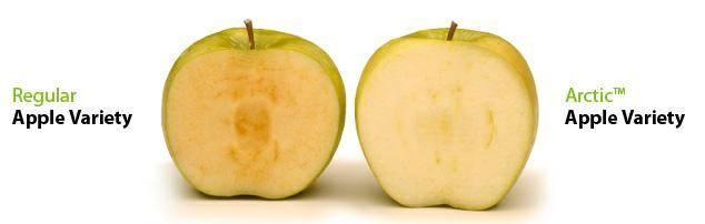 Чтобы яблоки не темнели - labeltest: здоровый образ жизни