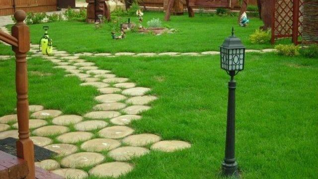 Как правильно посеять газонную траву своими руками
