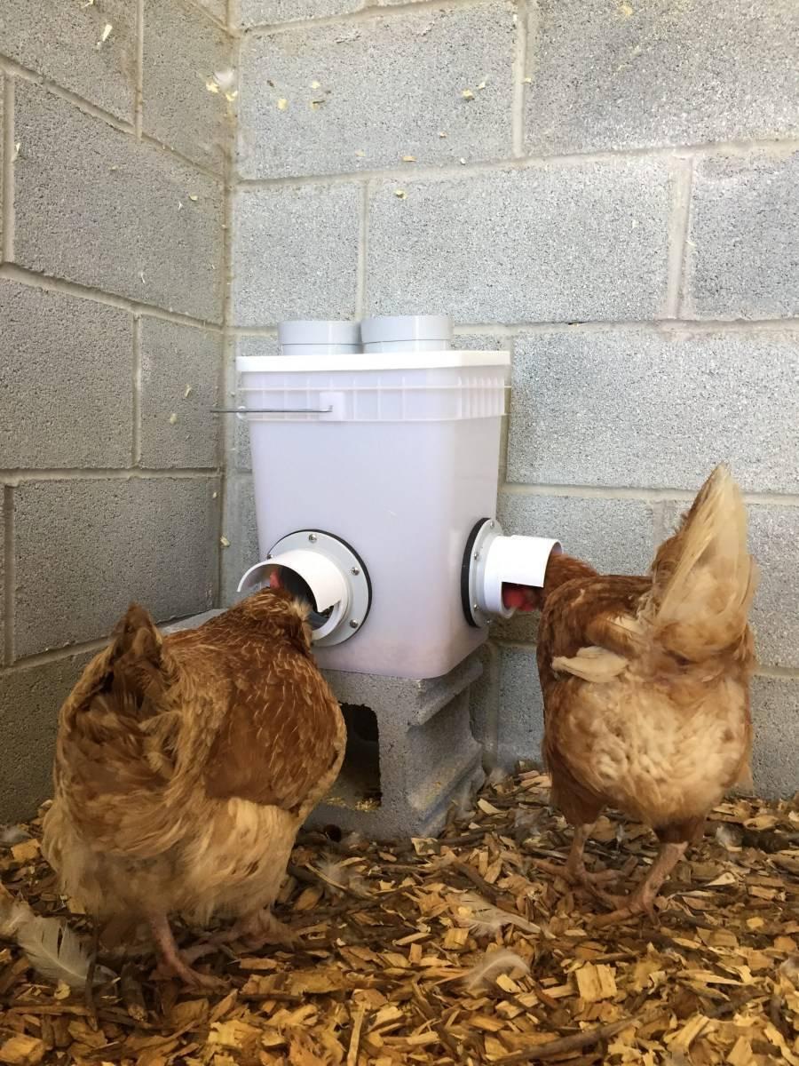 Бункерная кормушка для кур: как сделать своими руками, чертежи, фото, инструкции
