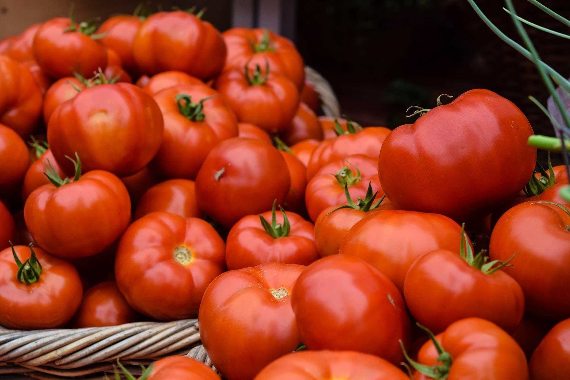 Помидор — это ягода или овощ?