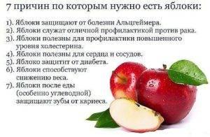 Сушеные яблоки - польза и вред для здоровья организма