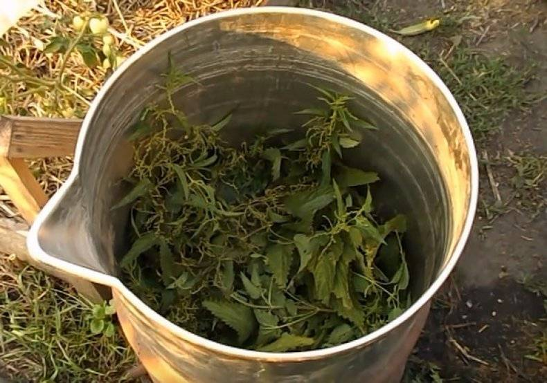 Как приготовить удобрение из крапивы для подкормки растений