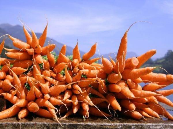 Как почистить морковь: 14 шагов (с иллюстрациями)