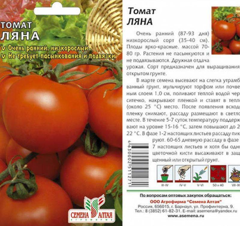 Томат ляна: выращивание, характеристика и описание сорта помидор