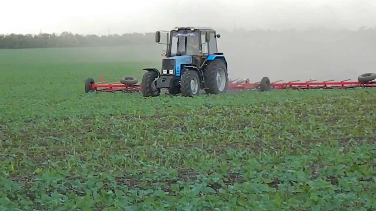Бороновать или не бороновать? | fermer.ru - фермер.ру - главный фермерский портал - все о бизнесе в сельском хозяйстве. форум фермеров.