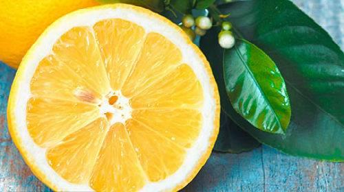 К чему снится лимонное дерево сонник для женщин, что означает сон, в котором приснилось лимонное дерево