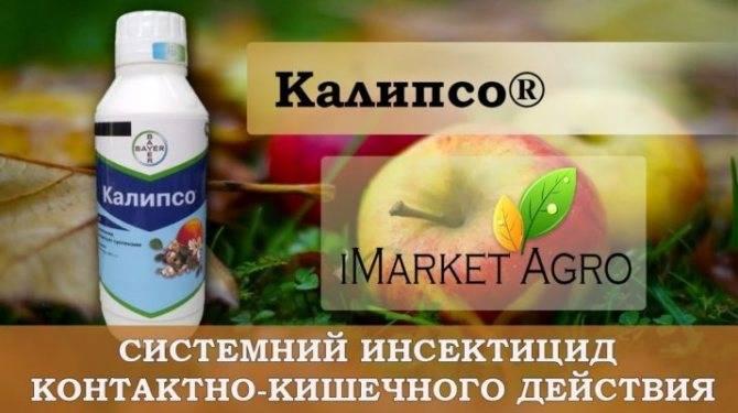 Инсектицид «калипсо»: инструкция по применению препарата от садовых и огородных вредителей