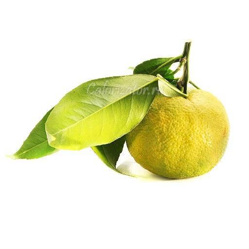 Юдзу: дерево, цитрус, фрукт юдзу: дерево, цитрус, фрукт