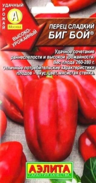 Перец биг мама: описание сорта, характеристики и вкусовые качества, условия для выращивания, отзывы и фото