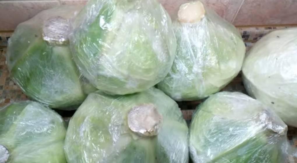 Как хранить капусту в погребе до весны