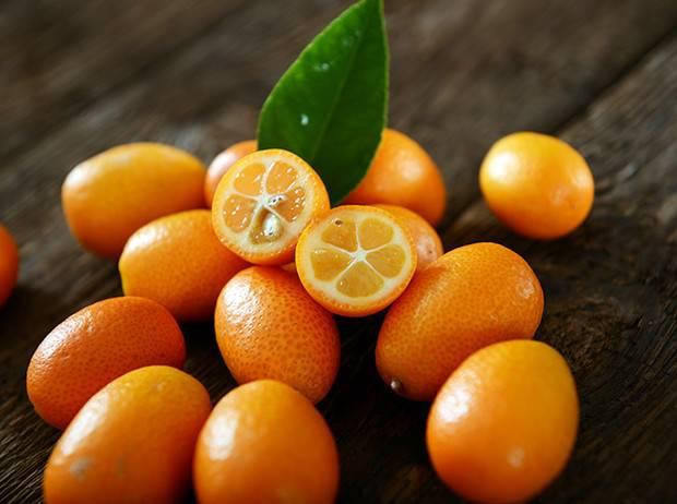 Гибрид лимона с апельсином