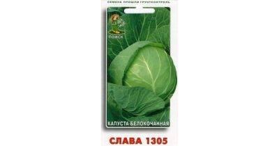 Какие заморозки выдерживают посевы в огороде - дачные советы.ру