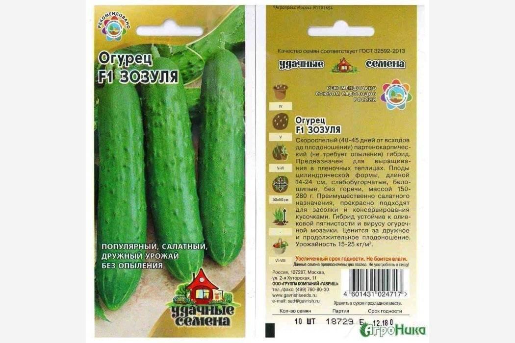 Выращивание сорта огурцов зозуля в открытом грунте и теплице