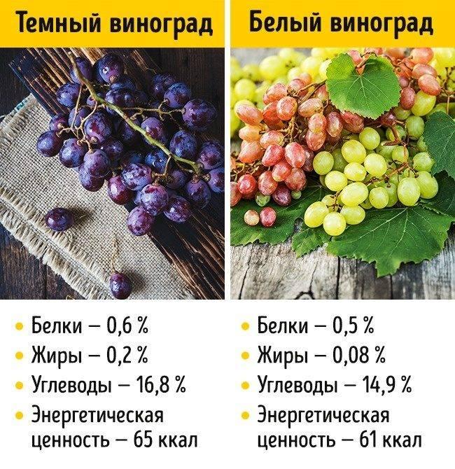 Сколько калорий в винограде киш миш зеленом. виноград