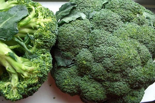 Брокколи фиеста f1: описание сорта капусты, отзывы и фото садоводов, которые выращивали