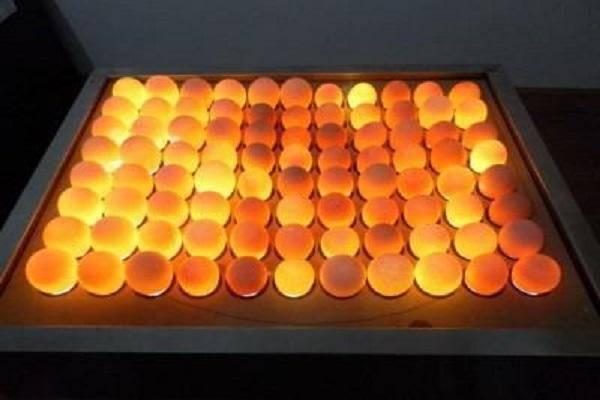 Овоскопирование куриных и гусиных яиц по дням, процедура овоскопирования и ее особенности
